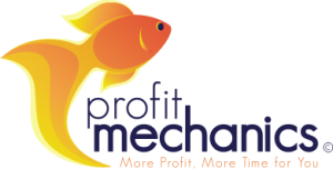 Profit Mechanics